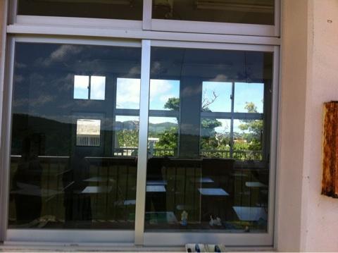 野鳥たちが窓ガラスに衝突